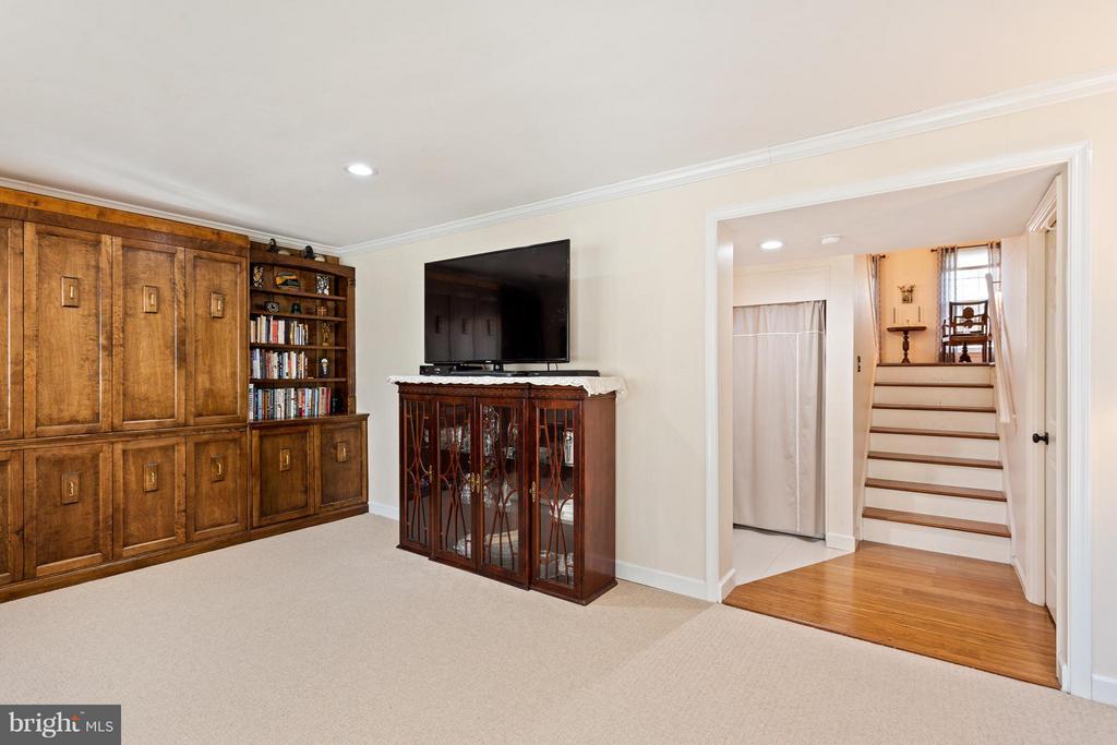 Lower Level Family Room/Bedroom 3 - 10001 WOOD SORRELS LN, BURKE