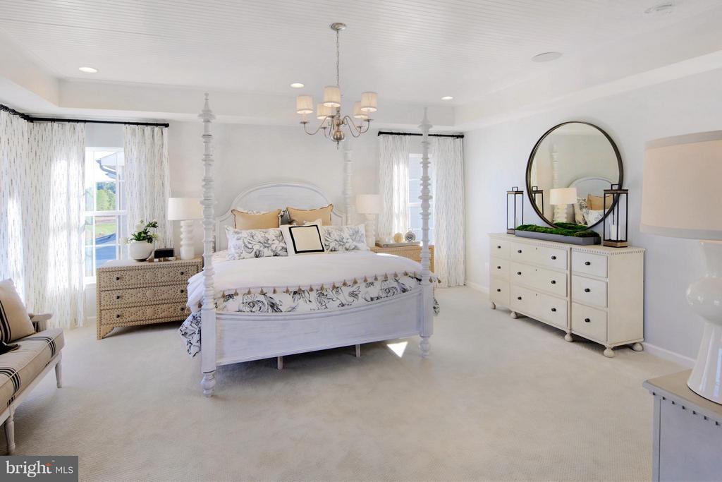 Owners Bedroom in Model - 3 BRIGHTSTAR DR, MANASSAS