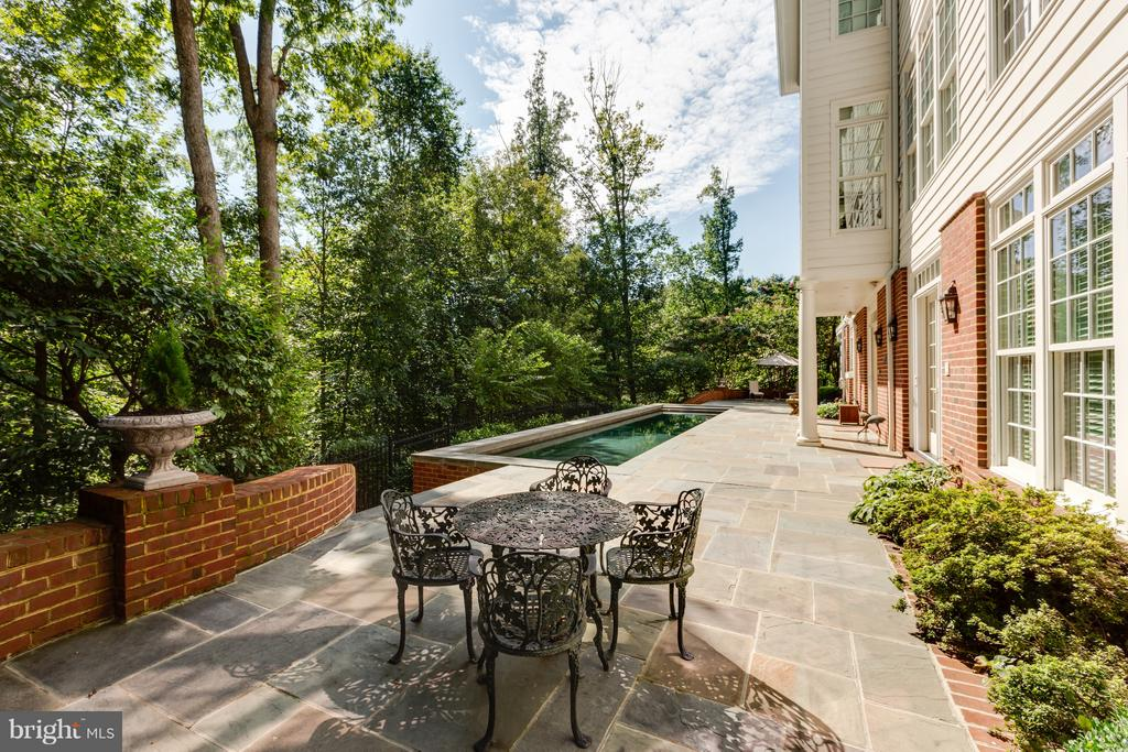 Stone terrace by the pool - 1103 FINLEY LN, ALEXANDRIA