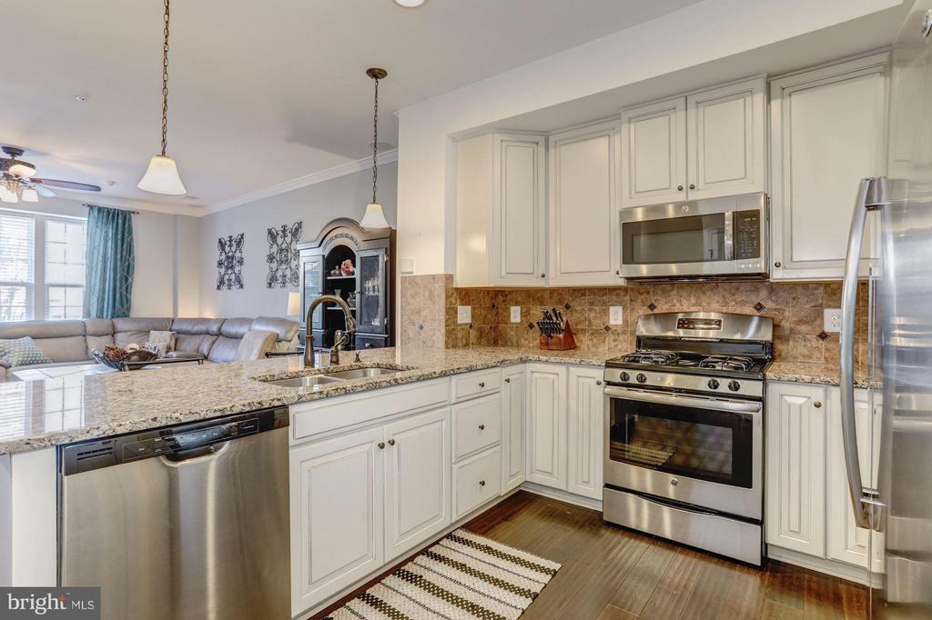 Kitchen - Gourmet Kitchen - VERY Beautiful! - 7530 BRUNSON CIR, GAINESVILLE