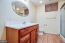 Basement bath has large vanity and walk-in shower - 6 DEENE CT, STAFFORD