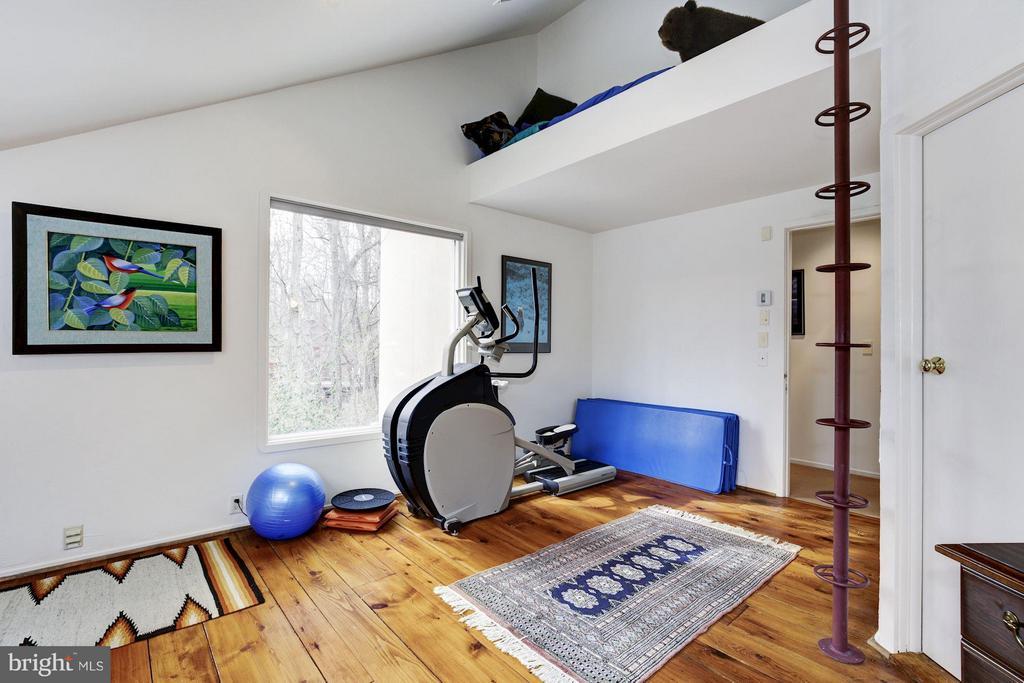 (3) Exercise area; pole ladder to child sleep loft - 11601 SPRINGRIDGE RD, ROCKVILLE