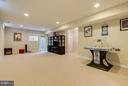 Rec Room - 118 MADISON RIDGE LN, HERNDON