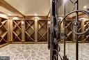 Professional Wine Cellar - 3301 FESSENDEN ST NW, WASHINGTON