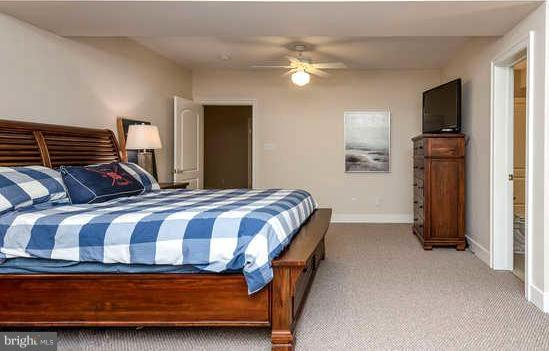 Basement Bedroom w/ 2 Large Walk-in Closets - 11207 KNOLLS END, SPOTSYLVANIA