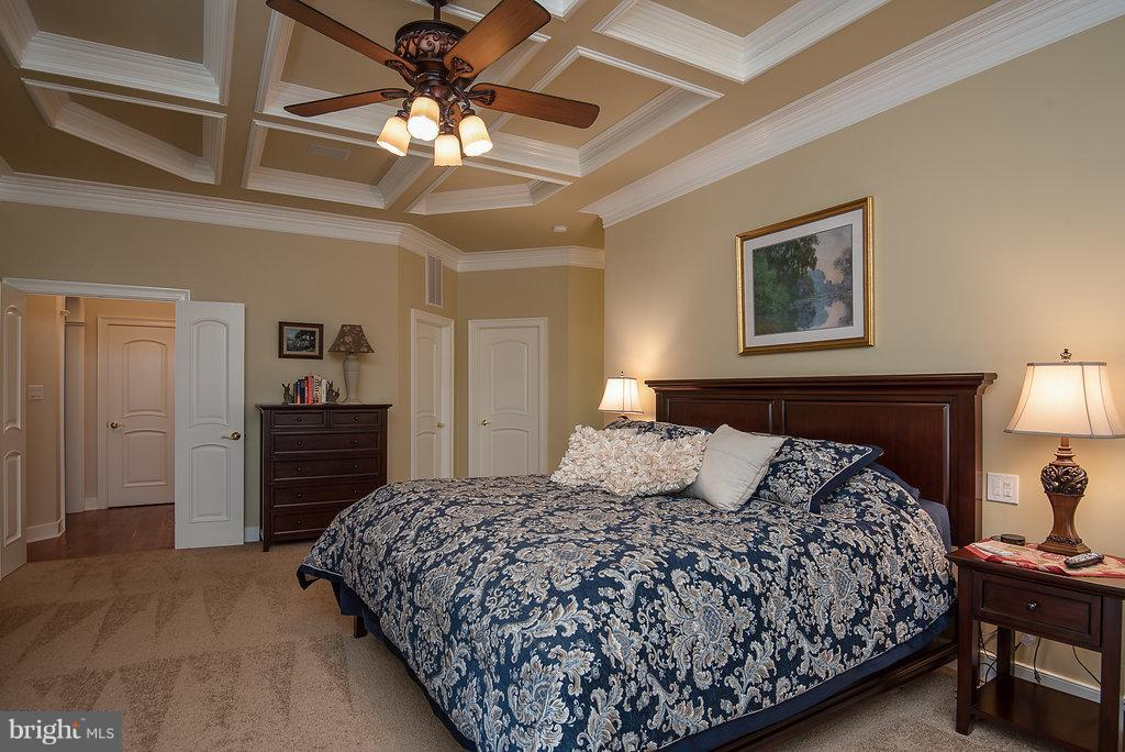 French Door Entry Into Luxury Master Bedroom - 11207 KNOLLS END, SPOTSYLVANIA