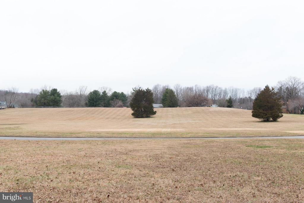 13 acres of common, owned by the HOA not buildable - 9109 WHITE CHIMNEY LN, GREAT FALLS