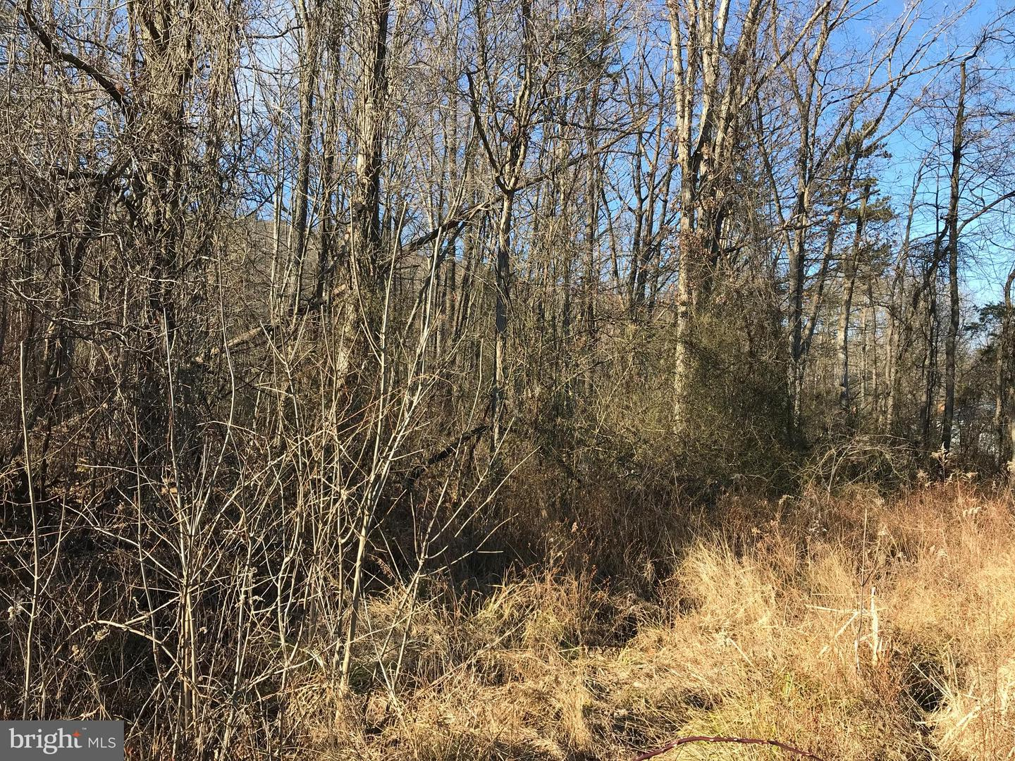 Land for Sale at Us 522 Valley Road Berkeley Springs, West Virginia 25411 United States