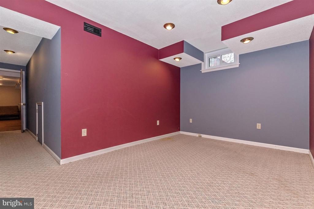 Basement Bonus Room - 241 BRAEBURN CIR, WALKERSVILLE