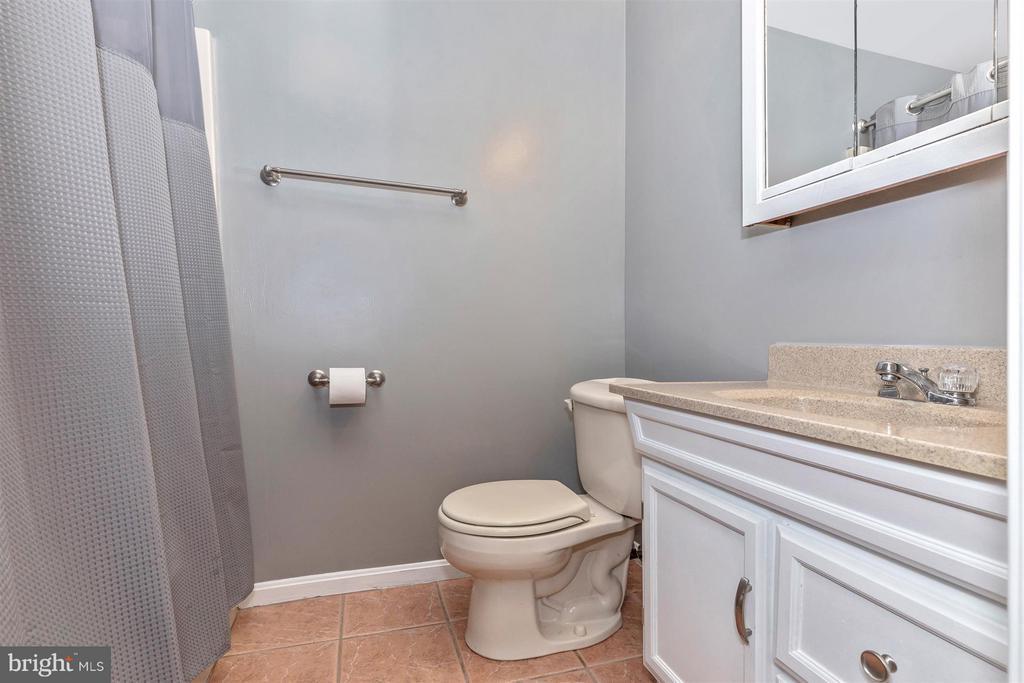 Basement Full Bathroom - 241 BRAEBURN CIR, WALKERSVILLE