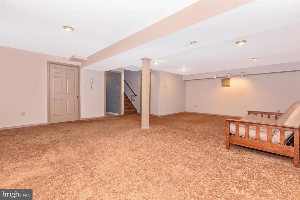 Basement Rec Room - 241 BRAEBURN CIR, WALKERSVILLE
