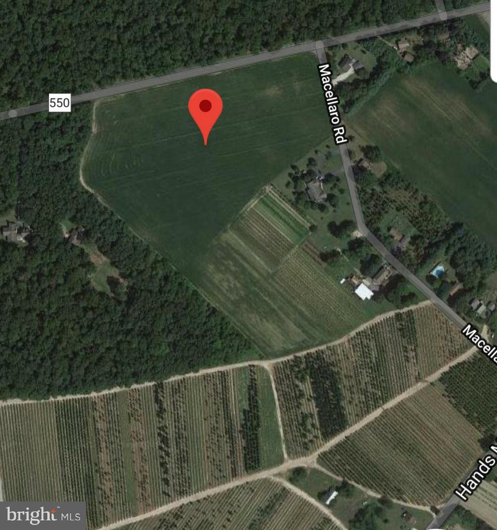 Land for Sale at 165 MACELLARO Road Woodbine, New Jersey 08270 United States