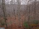 Over 9 wooded Acres with small creek - 12605 CRAWFISH HOLLOW  CT., MANASSAS