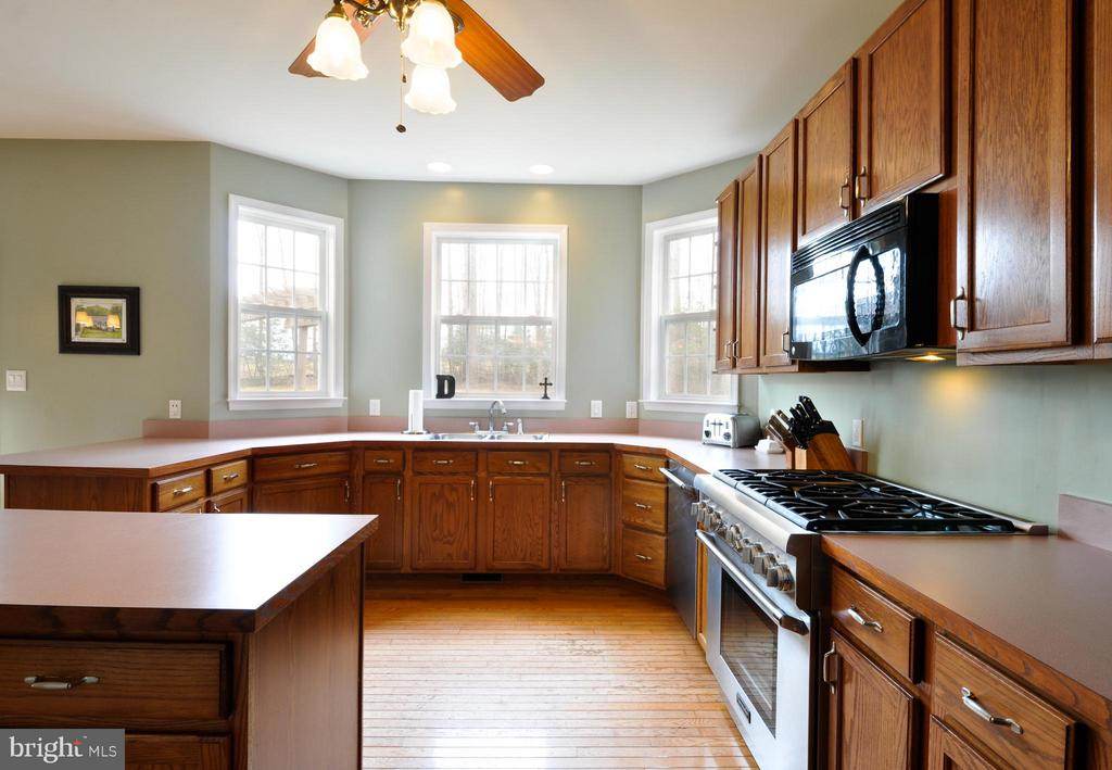 Spacious kitchen with great cabinet space! - 221 SEQUESTER DR, STAFFORD
