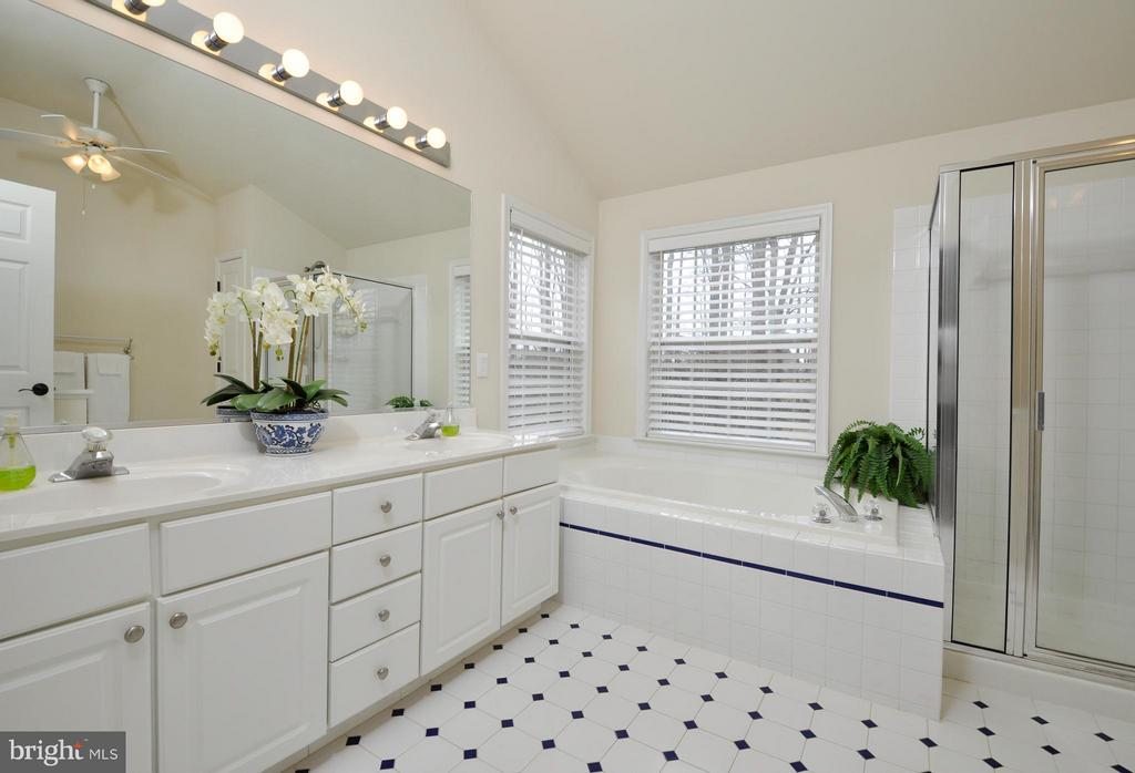 Sparkling master bath! - 221 SEQUESTER DR, STAFFORD
