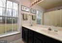 Double Vanity Hall bath - 221 SEQUESTER DR, STAFFORD
