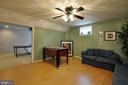 Cozy lower level den/rec-room - 221 SEQUESTER DR, STAFFORD