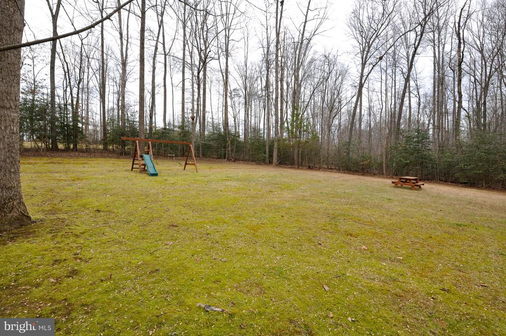 Great backyard! - 221 SEQUESTER DR, STAFFORD