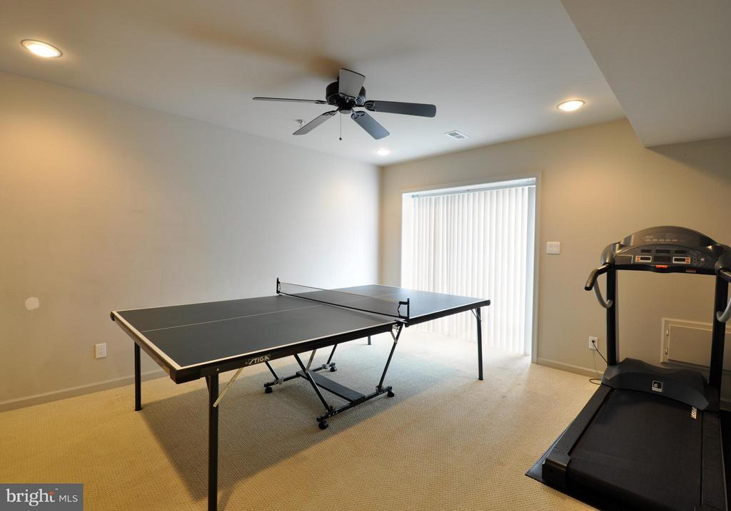 Game/exercise room with walk out access - 221 SEQUESTER DR, STAFFORD
