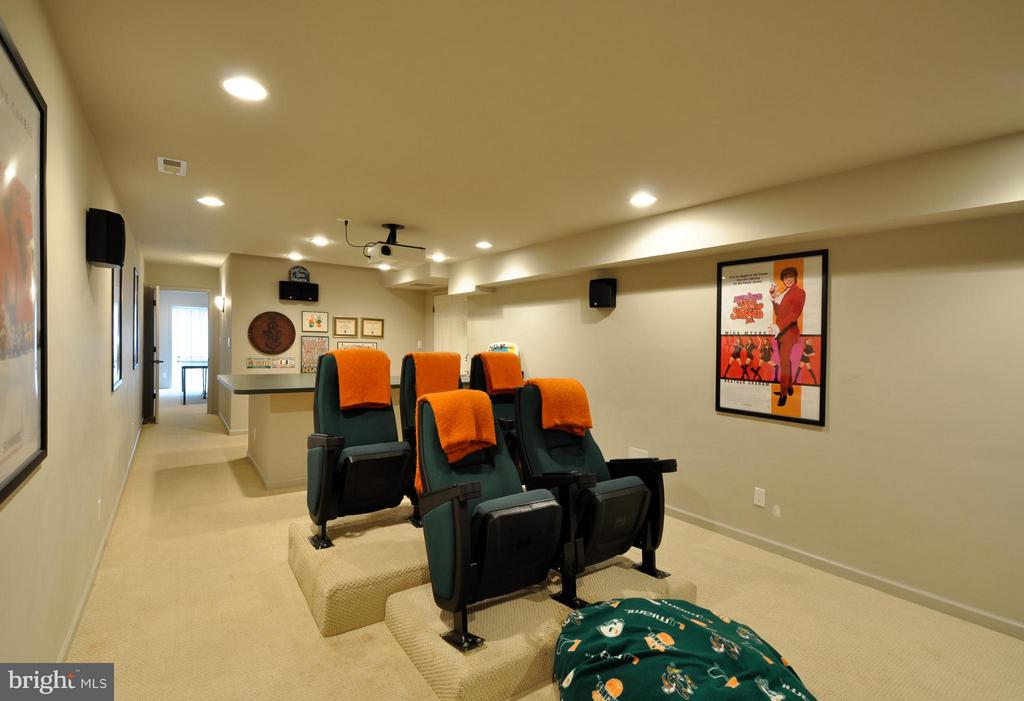 Enjoy movies with the family! - 221 SEQUESTER DR, STAFFORD