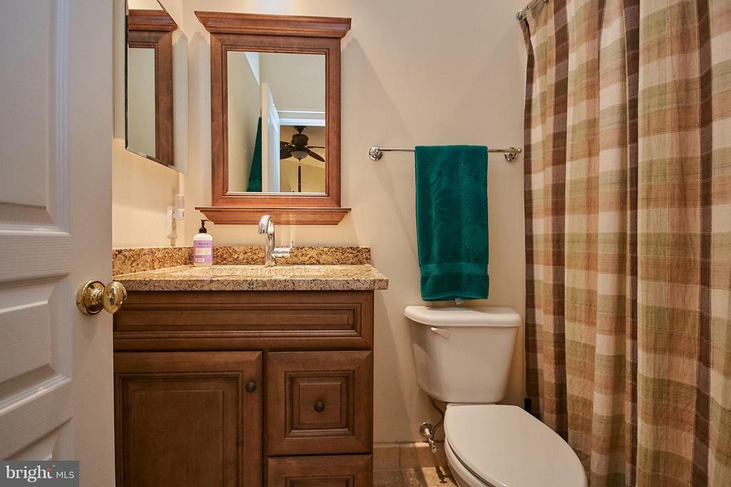 Princess Suite bath - 7224 FARR ST, ANNANDALE