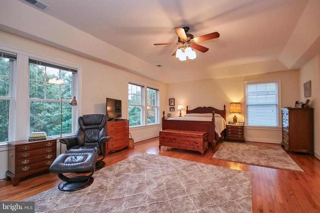 Master Suite. Tray ceilings. View of rear yard - 7224 FARR ST, ANNANDALE