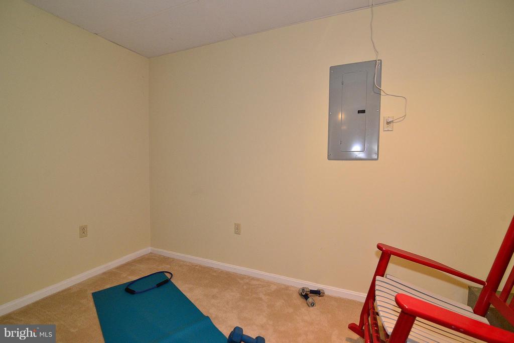 Lower Level Bonus Room - 4555 SHETLAND GREEN RD, ALEXANDRIA