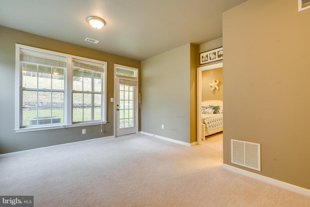 Light & Bright LL Rec. Room with Full Walk-Out - 21018 ROAMING SHORES TER, ASHBURN