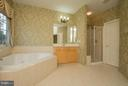 Master Bath with Soaking Tub & Separate Shower. - 21844 WESTDALE CT, BROADLANDS