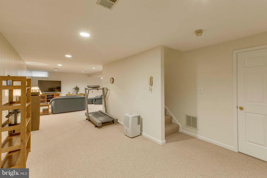 Lower level recreation room - 145 PEYTON RD, STERLING
