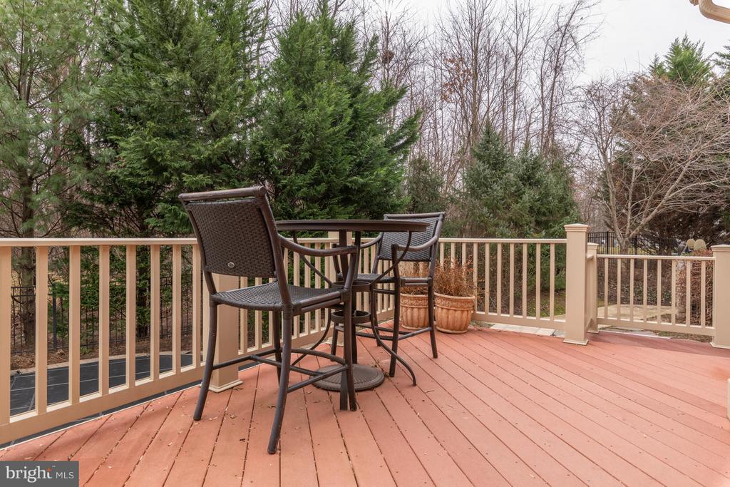 Rear Deck Overlooking Pool and Patio - 3013 ROSE CREEK CT, OAKTON