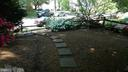 Backyard in the Spring/Summer - 10001 WOOD SORRELS LN, BURKE