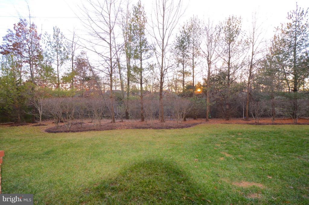 Backs to trees and lawn - 20365 BELMONT PARK TER #104, ASHBURN