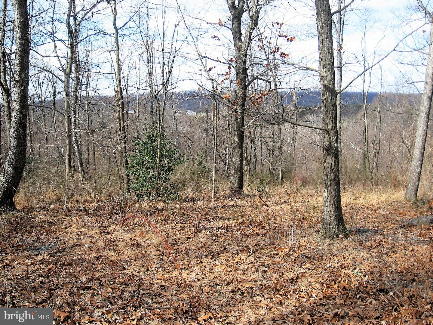 Land for Sale at Grove Heights Rd #parcel A Berkeley Springs, West Virginia 25411 United States