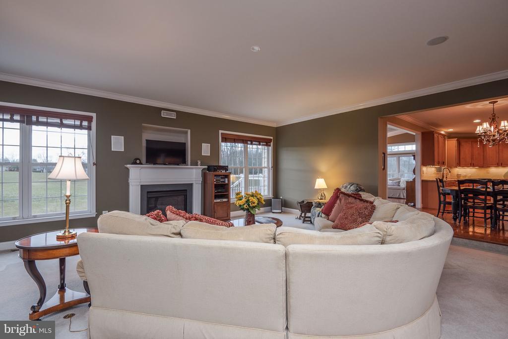 Family Room w/ Gas Fireplace - 10 BOSTON CT, FREDERICKSBURG