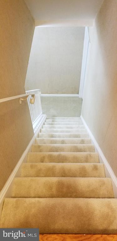 Steps to Basment - 4147 CENTURY CT, ALEXANDRIA