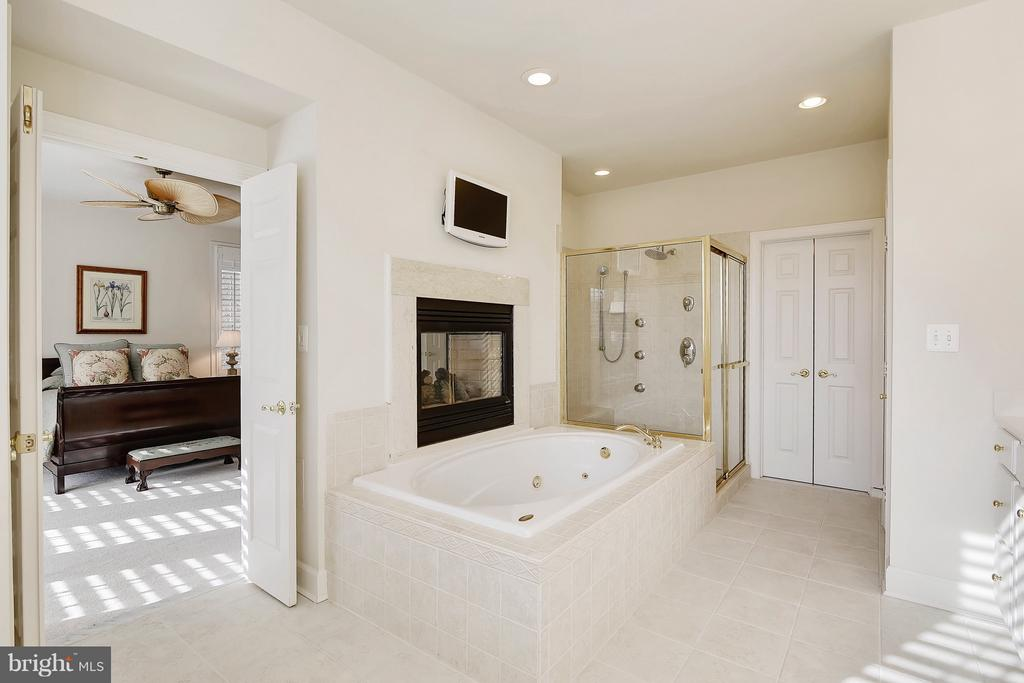 Fireplace connecting the bedroom and bathroom - 43468 CASTLE HARBOUR TER, LEESBURG