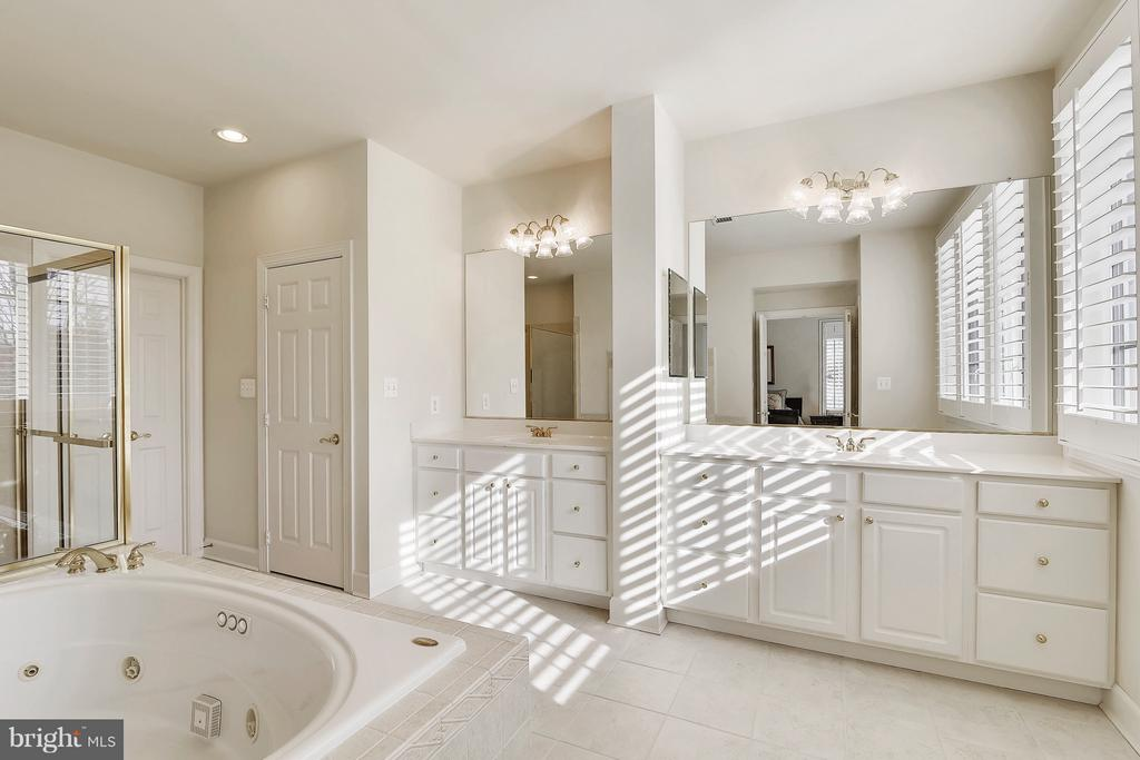 Master Bath with Large Shower and Jetted Tub - 43468 CASTLE HARBOUR TER, LEESBURG