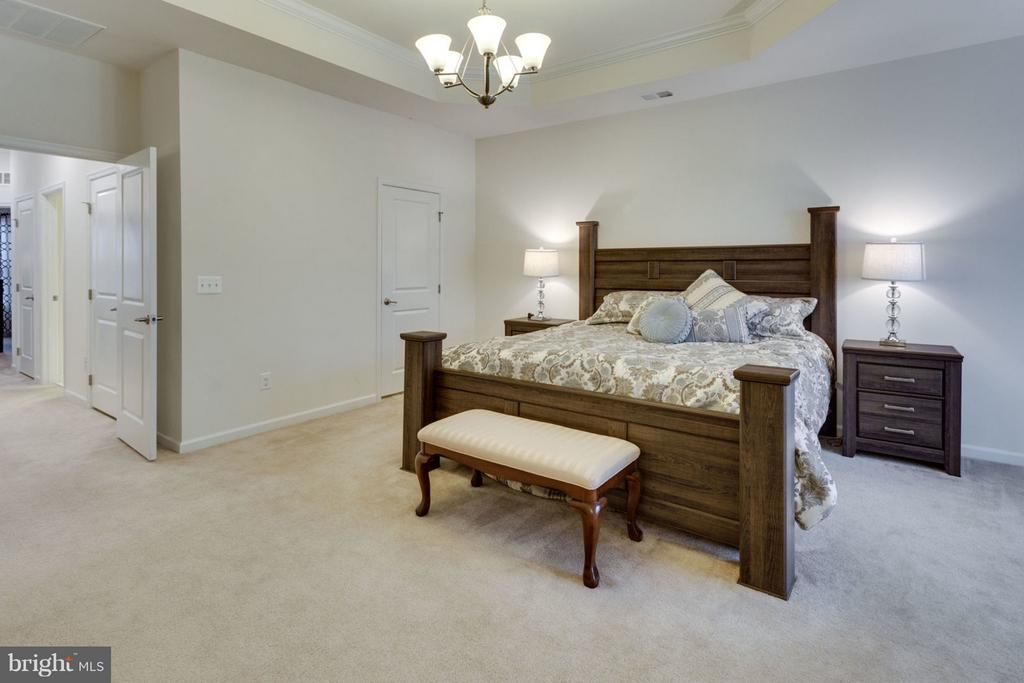 Large walk-in closet and additional storage - 7820 CULLODEN CREST LN, GAINESVILLE
