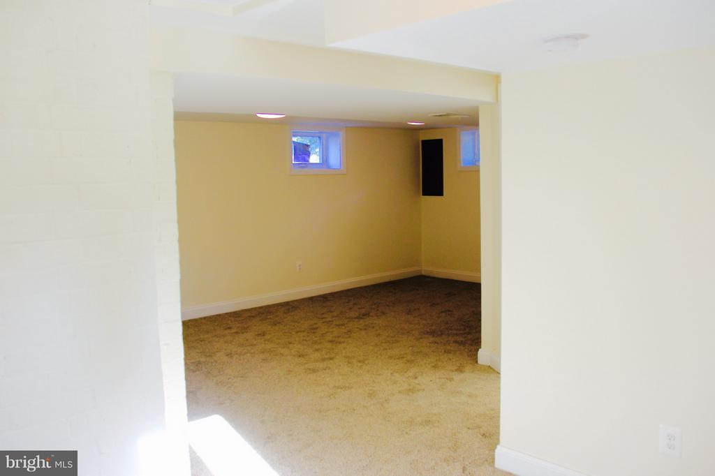 Walkout basement with rec room and bedroom - 5201 MOUNT VERNON MEMORIAL HWY, ALEXANDRIA