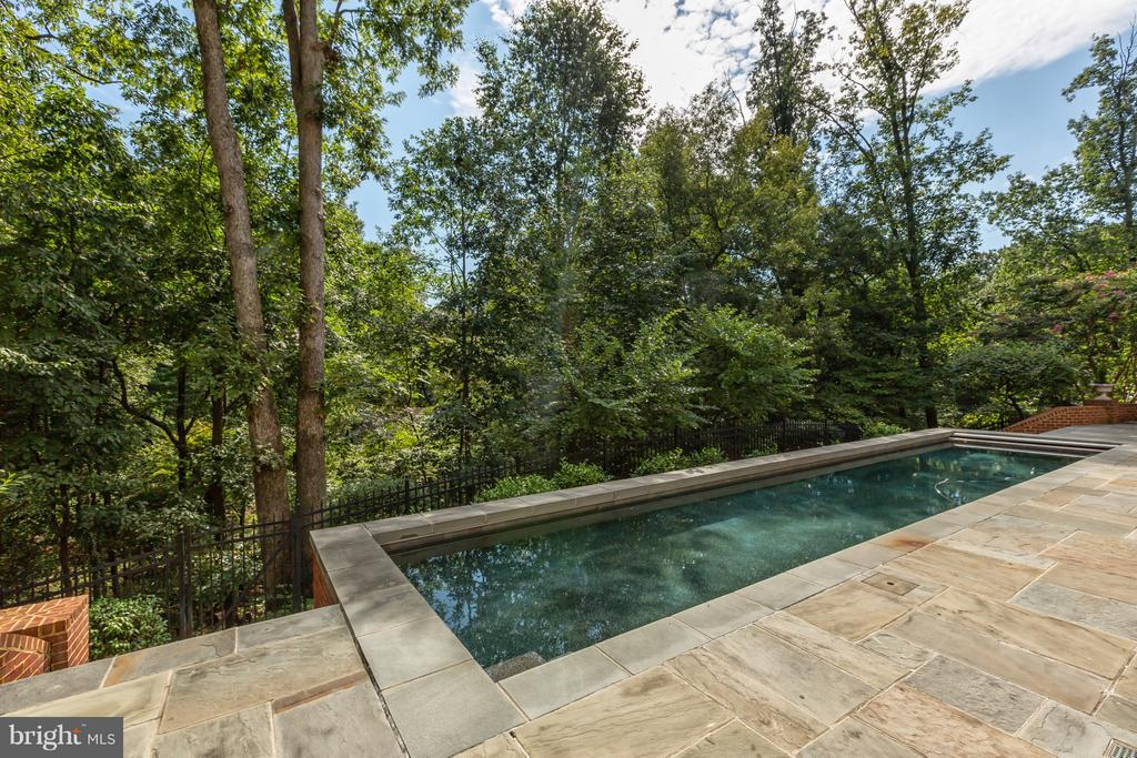 Lap pool enjoys privacy and sunlight - 1103 FINLEY LN, ALEXANDRIA