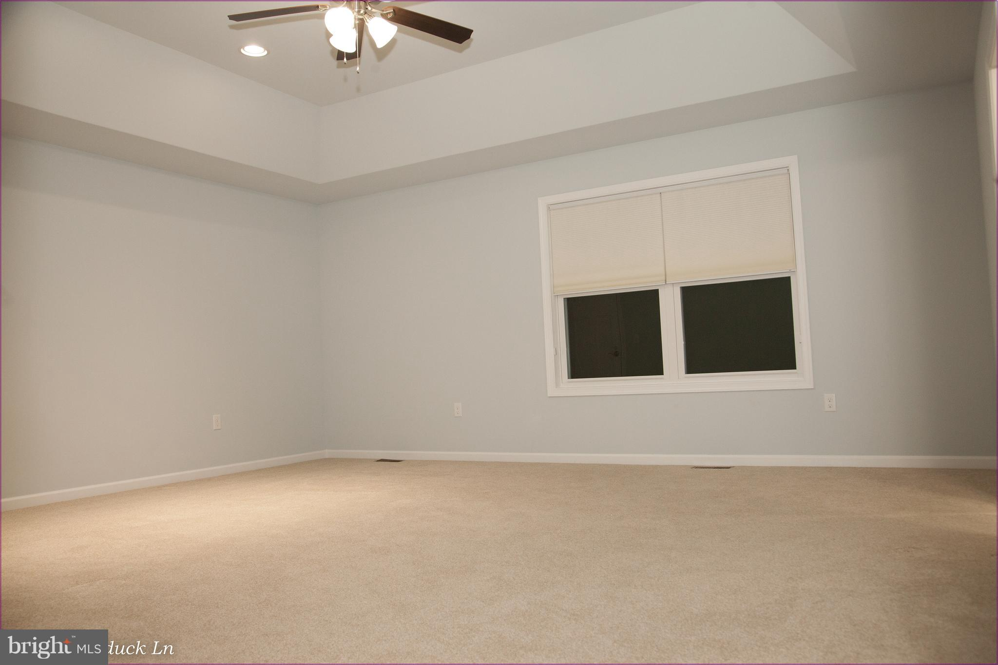 Master Bedroom, Double Window, Ceiling Fan Light