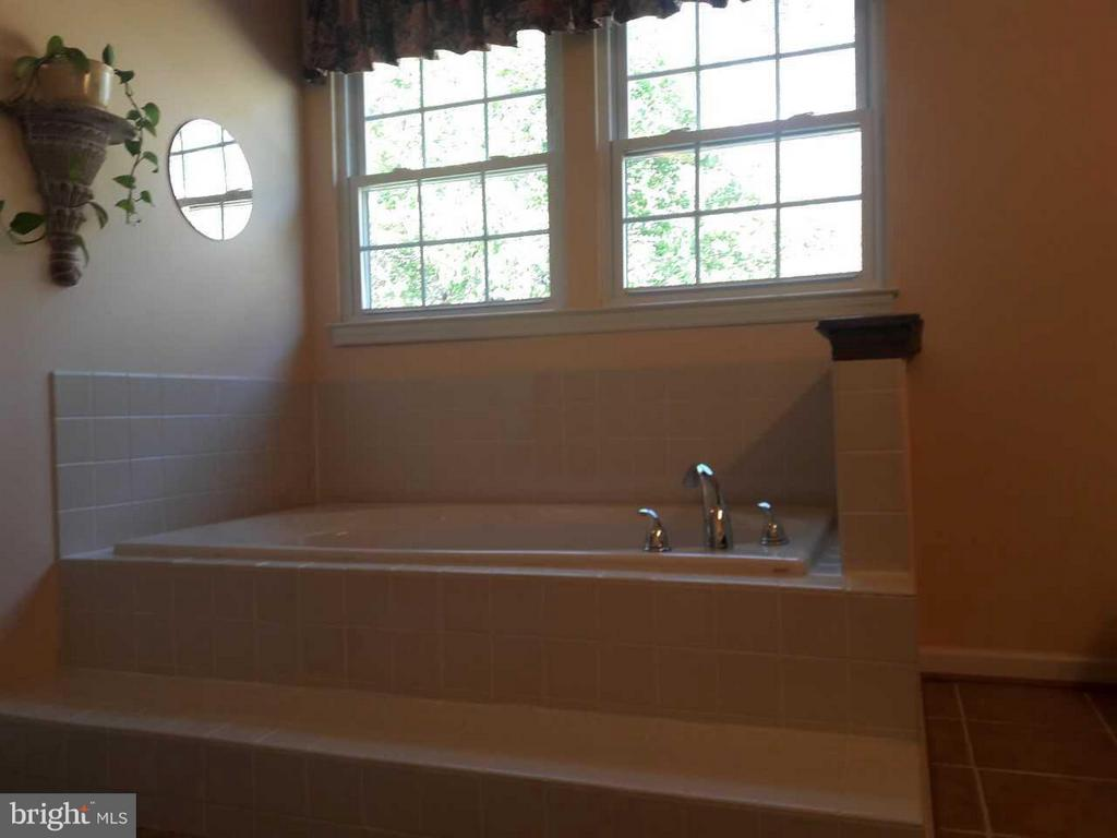 Soak your cares away in step-up master tub - 14789 STATLER DR, WOODBRIDGE