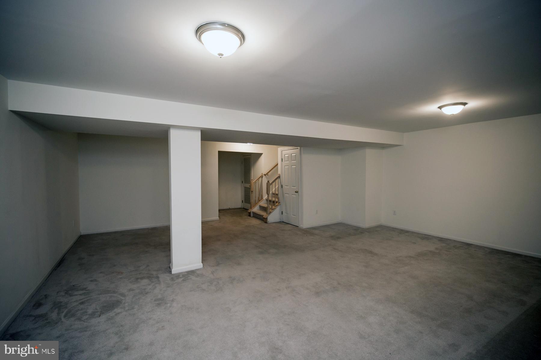 Family Room/Basement
