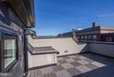 Private roof deck with hose bib, gas line - 421 GUETHLER WAY SE, WASHINGTON
