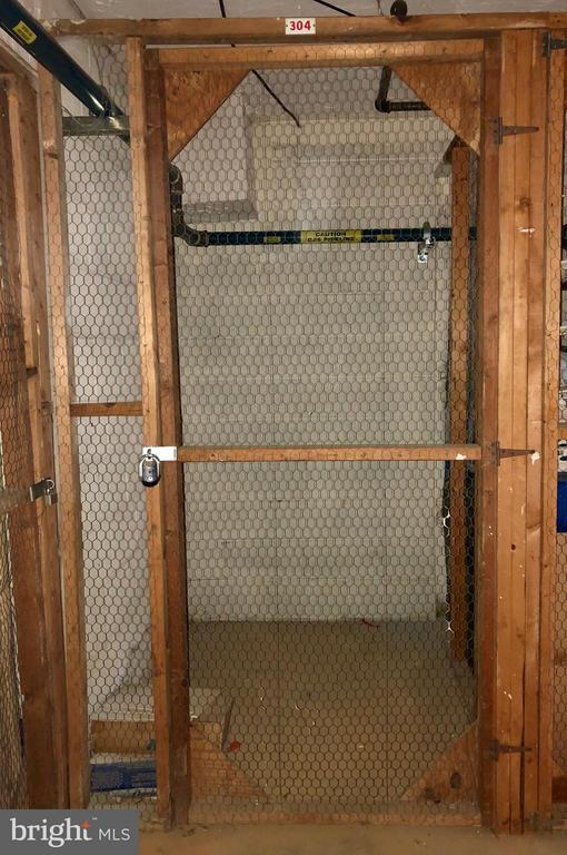 Extra Storage in Common Basement Area - 4404 ISLAND PL #304, ANNANDALE
