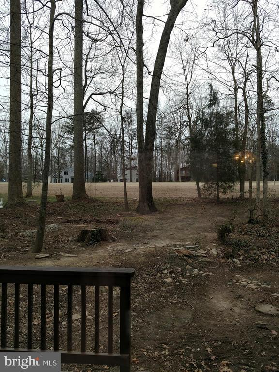 View off back of Golf Course - 510 MT PLEASANT DR, LOCUST GROVE