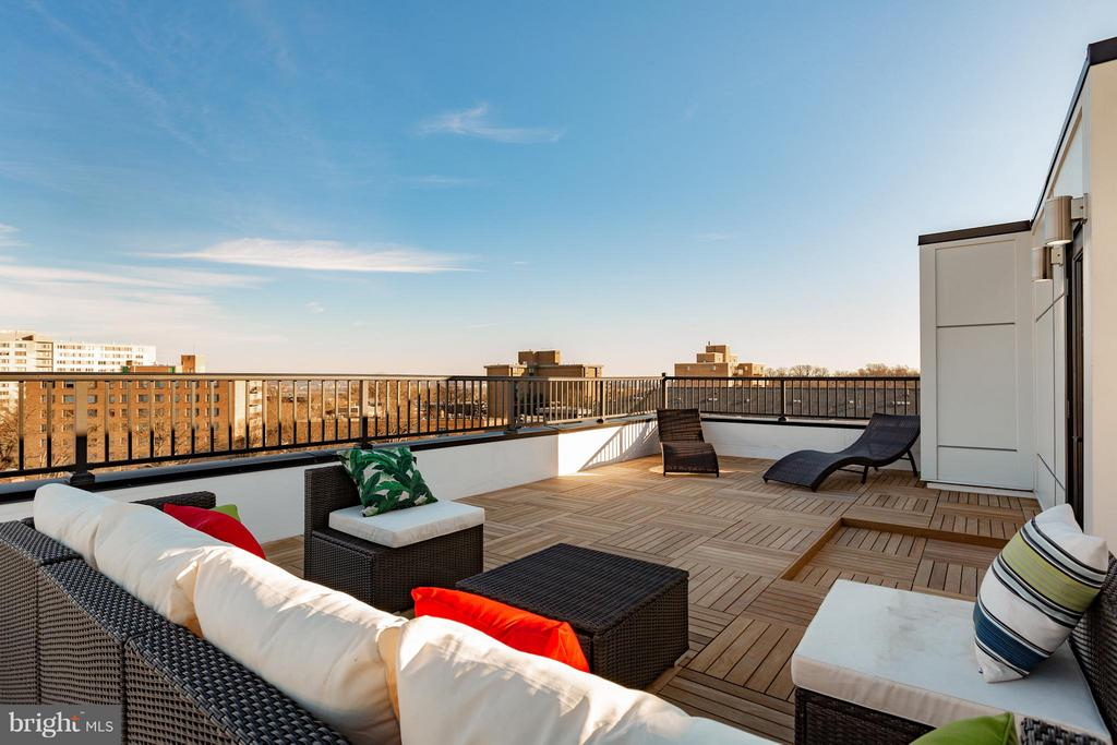Staged roof-top deck - 1245 PIERCE ST N #11, ARLINGTON