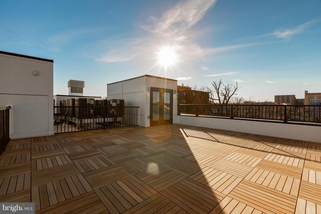 PRIVATE roof-top deck! - 1245 PIERCE ST N #11, ARLINGTON