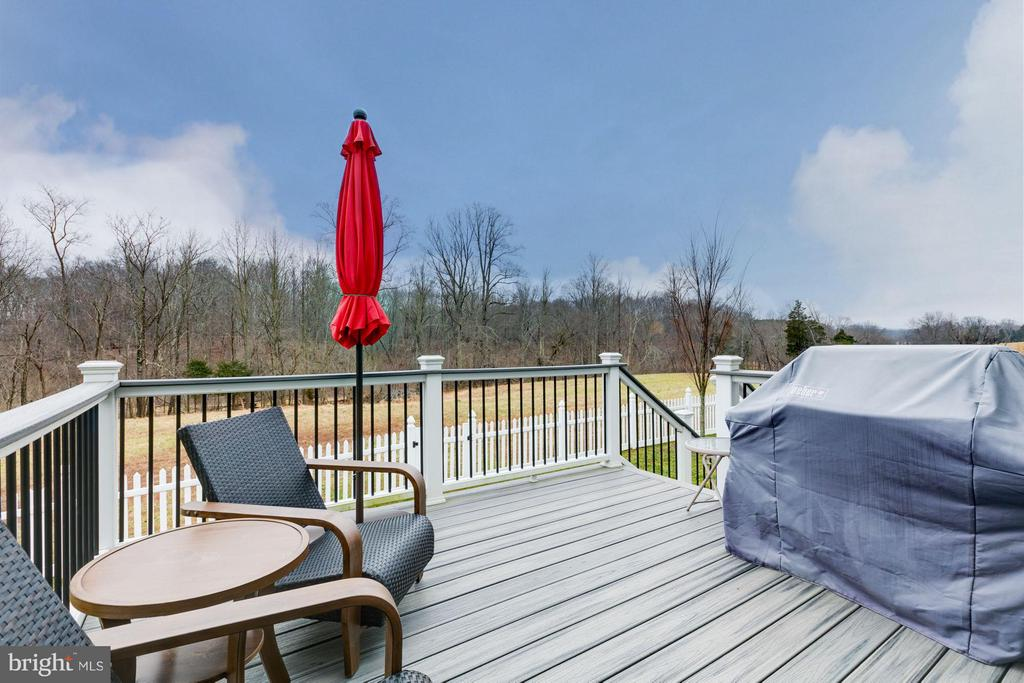 View of conservancy and mountains - 41629 WHITE YARROW CT, ASHBURN